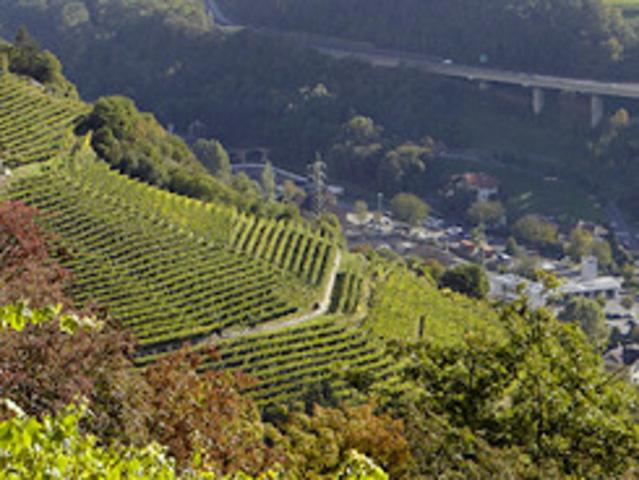 Eisacktal wein isarco vini kloster saeben monastero sabiona 3 01